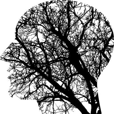 Science Minds Podcast