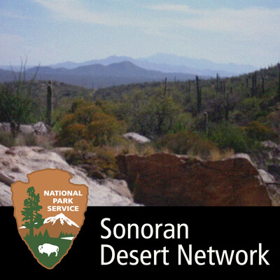 Sonoran Desert Network