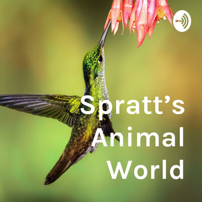 Spratt's Animal World