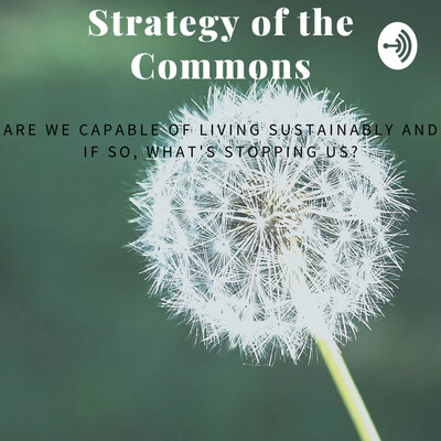 Strategy of the Commons