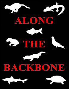 Along The Backbone