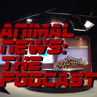 Animal News: The Podcast