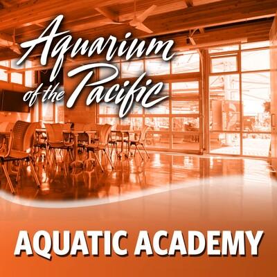 Aquatic Academy 2015