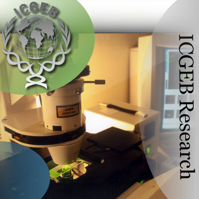 ICGEB Research