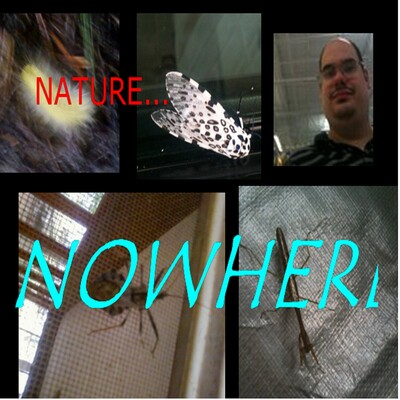 Nature Nowhere