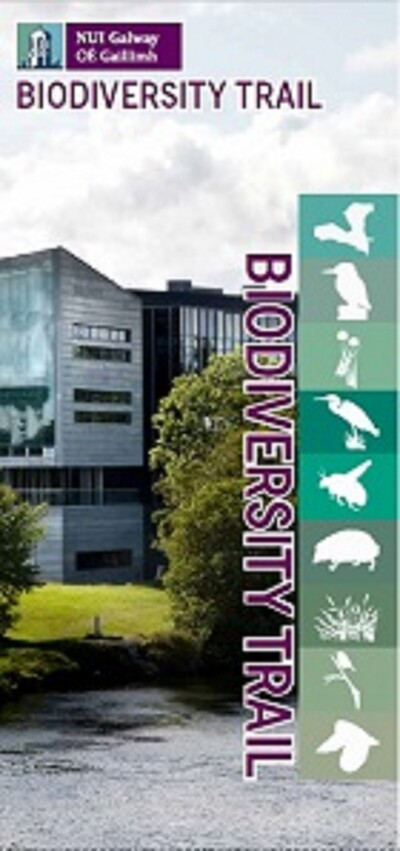 NUI Galway Biodiversity Trail