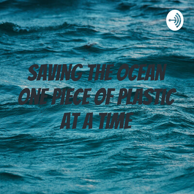 Saving the Ocean One Piece of Plastic at a time