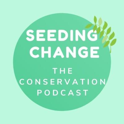 Planting Creative Seeds During Lockdown