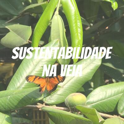 Sustentabilidade na Veia