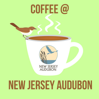 Coffee At New Jersey Audubon