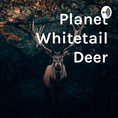 Planet Whitetail Deer