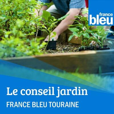 Le conseil jardin de FB Touraine