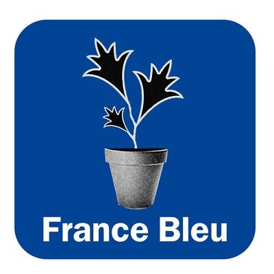 Les experts jardin France Bleu Armorique