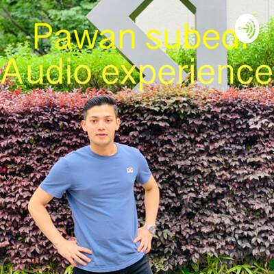 Pawan audio experience