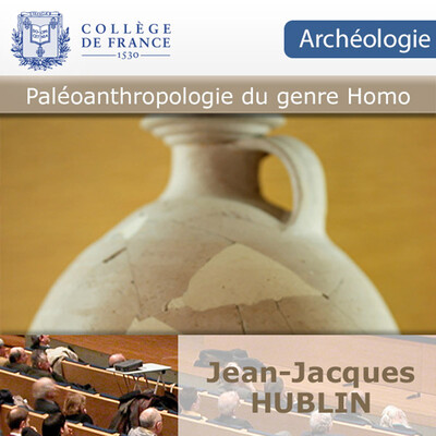 Paléoanthropologie du genre Homo