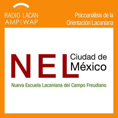 """Conferencia """"El psicoanálisis y las libertades"""": NEL-Ciudad México"""