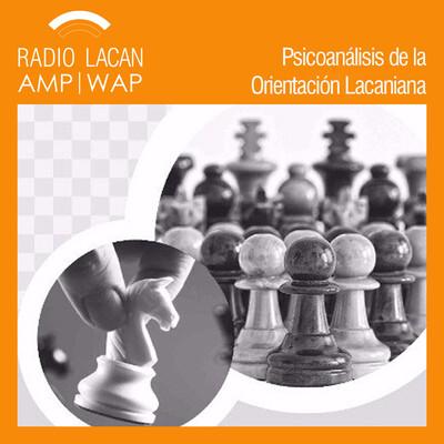Ecos de Medellín: Reseña del Seminario: Seguir el juego o la partida analítica de la manera que conviene, a cargo de Fabián Naparstek