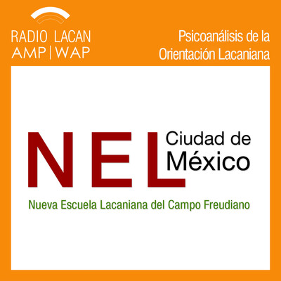 """Noche de la NEL-México. Segundo Ciclo de Psicoanálisis y Criminología. Conferencia """"Crimen y psicosis. Algunas consideraciones sobre la presentación de enfermos en una unidad de sobreseídos"""""""