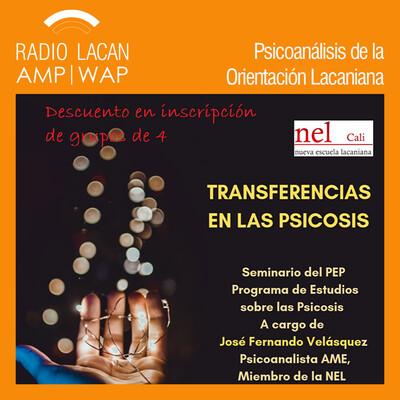 """Programa de estudios sobre las psicosis en la NEL-Cali. Seminario """"Transferencias en las psicosis"""""""