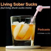 Living Sober Sucks, But Living Drunk Sucks More.