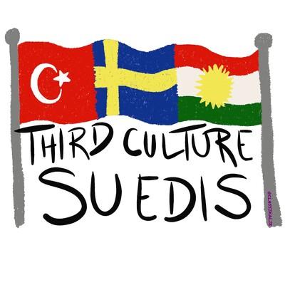 Third Culture Suedis