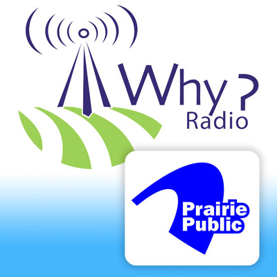 WHY? - Philosophical Discussions About Everyday Life