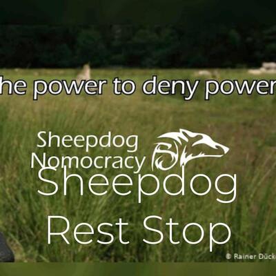 Sheepdog Rest Stop