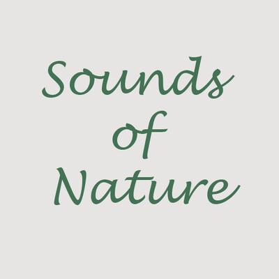 Environmental Sounds