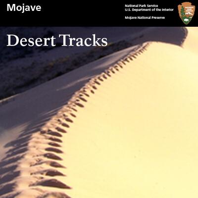 Mojave Desert Tracks