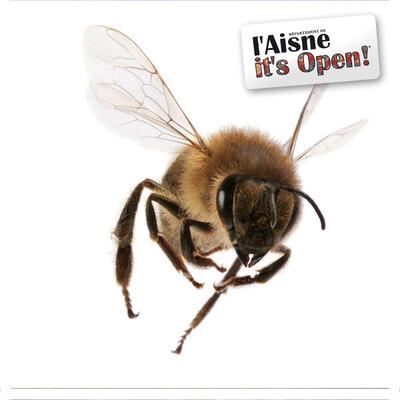 Le monde merveilleux de Zaza l'abeille
