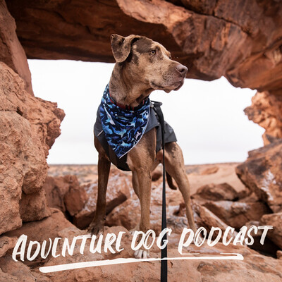 Adventure Dog Podcast