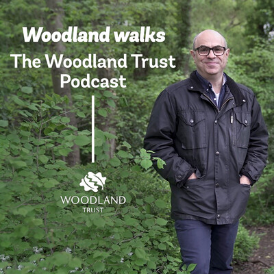 Woodland Walks - The Woodland Trust Podcast