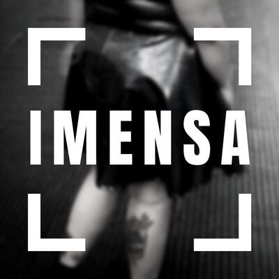 IMENSA