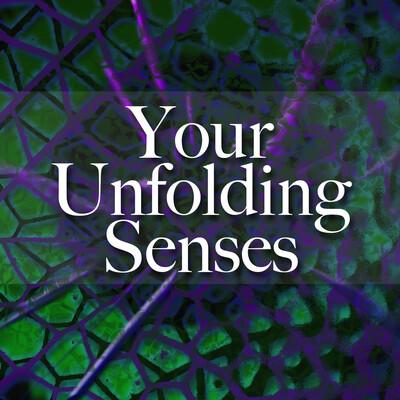 Your Unfolding Senses