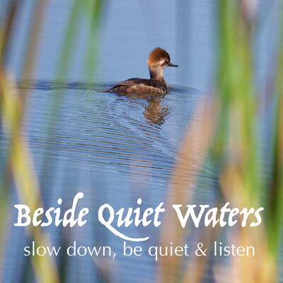 Beside Quiet Waters