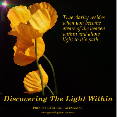 Discovering The Light Within