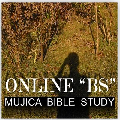 Online BS : Bible Study