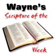 Wayne's Scripture of the Week
