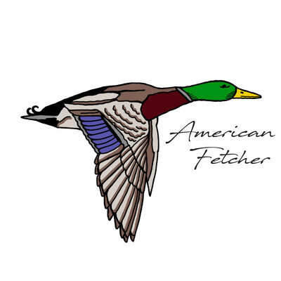 American Fetcher - Morning Chat