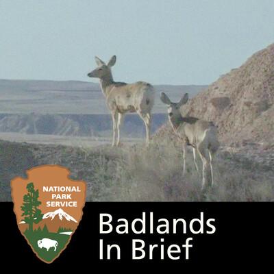 Badlands in Brief