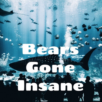Bears Gone Insane