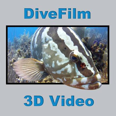 DiveFilm 3D Video