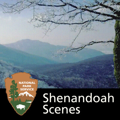 Shenandoah Scenes
