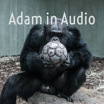 Adam in Audio