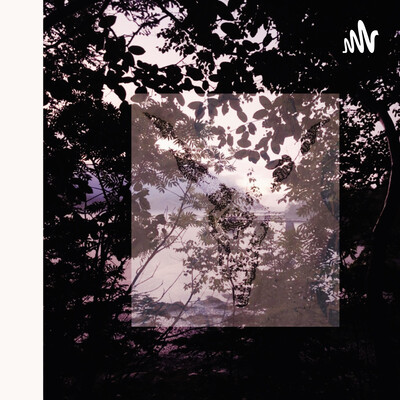 Beyond the Beautiful Forevers; Caste System