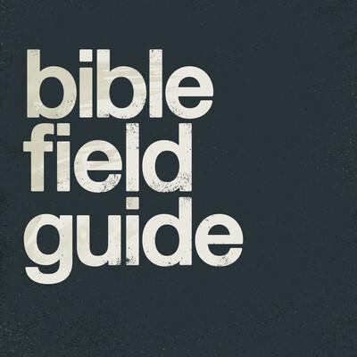 Bible Field Guide