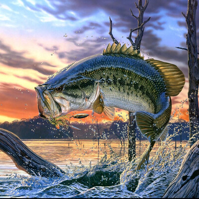 Angling Waters Outdoors
