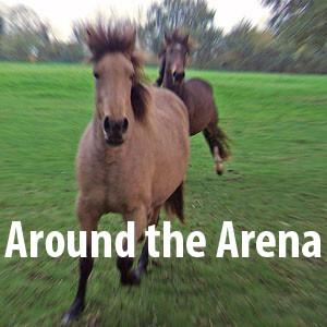 Around the Arena
