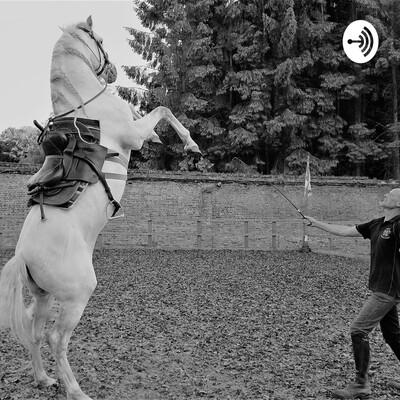 Enjoy Your Horse Podcast