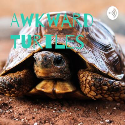 Awkward Turtles